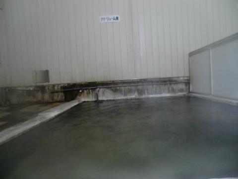 幌加温泉 湯元 鹿の谷 北海道 日帰り入浴 混浴 画像