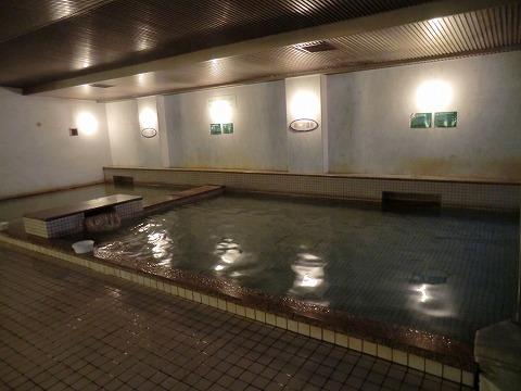 池の平温泉 池の平ホテル 男女別内湯 長野 日帰り温泉 画像