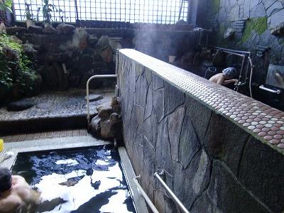 いさぜん旅館 東鳴子温泉 混浴内湯 画像