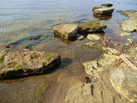 屈斜路湖畔「イソの湯」