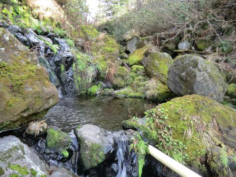 旭岳温泉「岩の湯」