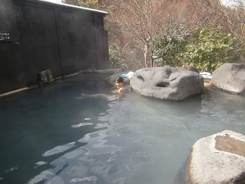 黒川温泉 樹やしき 熊本 混浴 露天風呂 日帰り入浴 温泉 画像