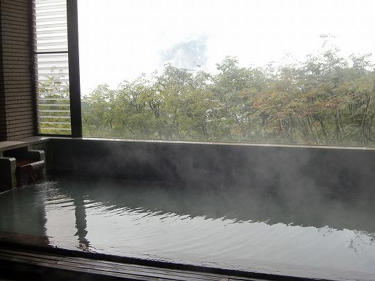 蓮華温泉「白馬岳 蓮華温泉ロッジ」 混浴露天風呂 新潟 日帰り温泉 画像