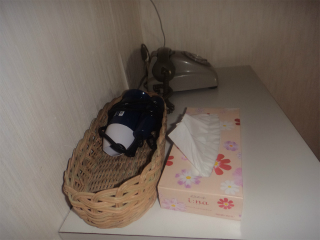 古里温泉 桜島シーサイドホテル 鹿児島 混浴 露天風呂 日帰り入浴 温泉 画像