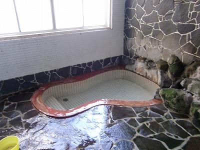湯守の宿三之亟 東鳴子 赤倉温泉 混浴内湯 天然岩風呂 画像