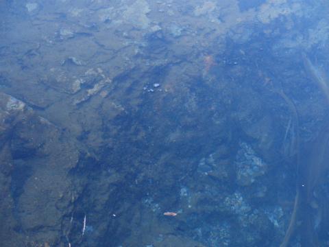 瀬石温泉 セセキ温泉 北海道 混浴 露天風呂 無料 画像