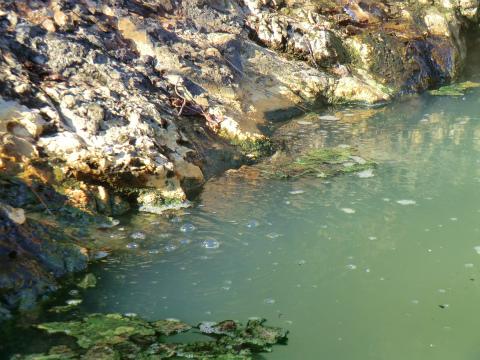 然別峡温泉 鹿の湯 北海道 混浴 露天風呂 無料 画像