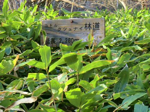 然別峡温泉 シリオパの湯 北海道 混浴 露天風呂 無料 画像
