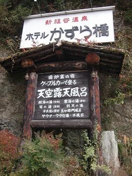 新祖谷温泉 ホテルかずら橋 徳島 無料  画像
