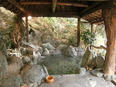 新祖谷温泉「ホテルかずら橋」