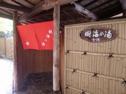 新祖谷温泉 ホテルかずら橋 徳島 男女別露天風呂 日帰り入浴 温泉 画像