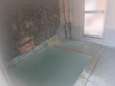 青森 嶽温泉「田沢旅館」 混浴 露天風呂 温泉 画像