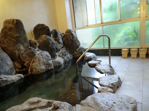 老神温泉 東秀館 日帰り入浴 群馬 画像