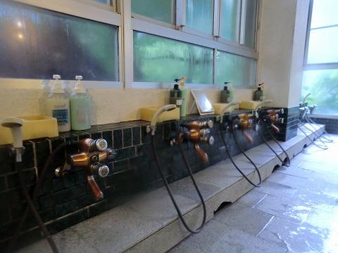 老神温泉 東秀館 混浴 日帰り入浴 群馬 画像