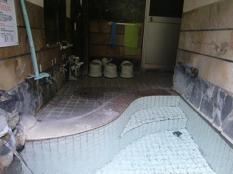四万温泉 つばたや旅館 日帰り入浴 貸切 群馬 画像