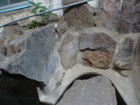 湯の鶴温泉 永野温泉 熊本 混浴 露天風呂 日帰り入浴 温泉 画像