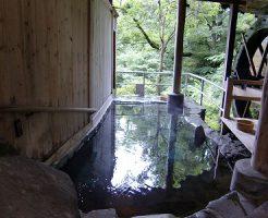 川原湯温泉「山木館」の画像