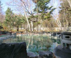 川湯温泉「温泉浪漫の宿 湯の閣 」