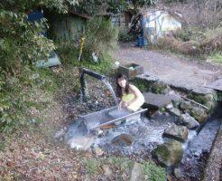 岩鼻温泉 ステンレス流し台の湯の画像