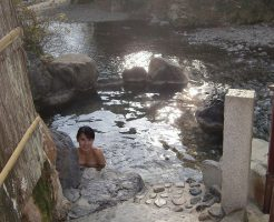 龍神温泉「下御殿」の画像