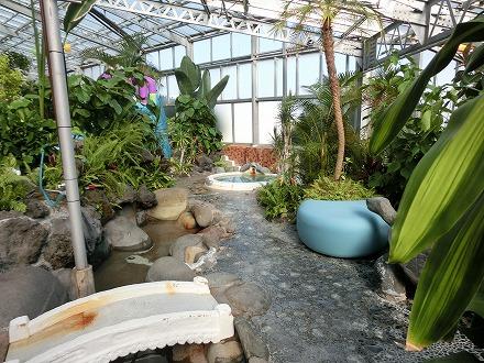 熱川温泉「ホテルカターラリゾート&スパ」のジャングルスパは探検しているよう