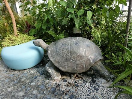 熱川温泉「ホテルカターラリゾート&スパ」のジャングルスパには動物のオブジェが