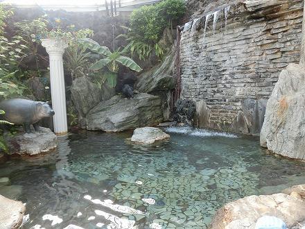熱川温泉「ホテルカターラリゾート&スパ」のジャングルスパの打たせ湯がある湯船