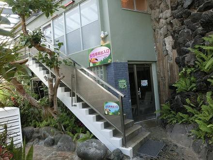 熱川温泉「ホテルカターラリゾート&スパ」のジャングルスパは脱衣所から階段を下ります
