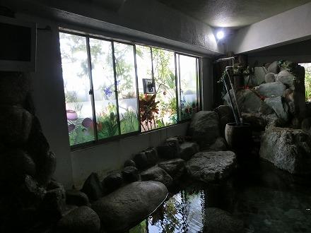 熱川温泉「ホテルカターラリゾート&スパ」のジャングルスパのナチュラルスチームスパは温室です