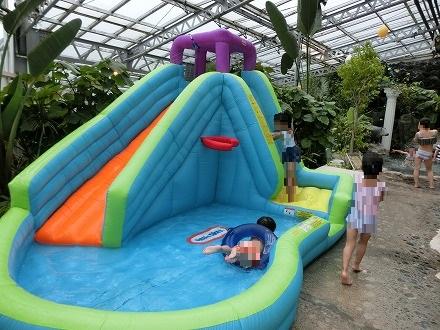 熱川温泉「ホテルカターラリゾート&スパ」のジャングルスパは子供が楽しめる工夫がたくさん