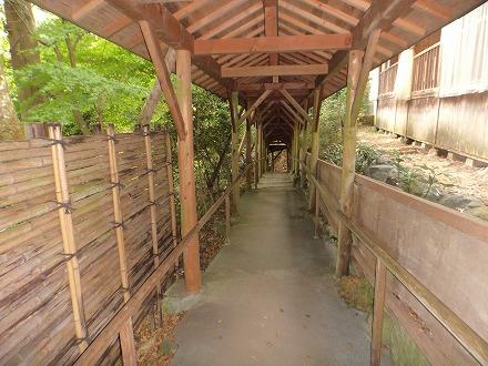 山中温泉「花つばき」の混浴露天風呂 湯畑へは川沿いへ向かって下りて行きます